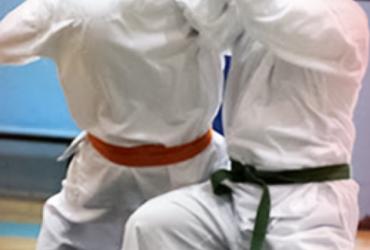 Karate Do Intermediate